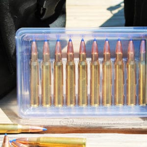 Ammo Buddy™ 30 CAL 10CT Ammo Box